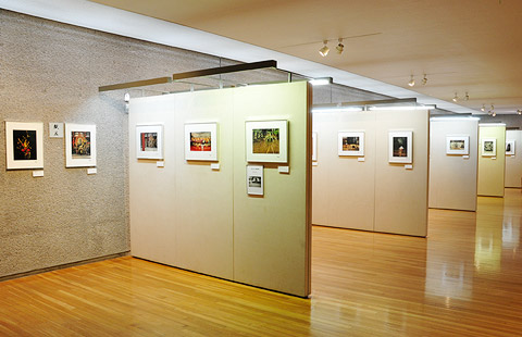④ 企画展示室Ⅰ